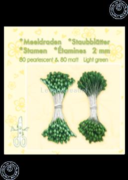 Picture of Stamen ± 80 matt & 80 light green
