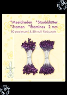 Picture of Stamen ± 80 matt & 80 red purple